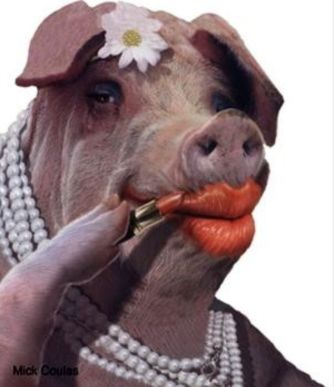 pig makeup.jpg